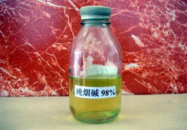 纯尼古丁溶液